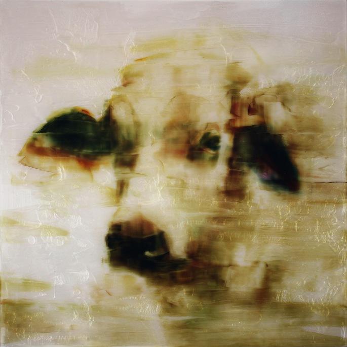 Dust Portrait
